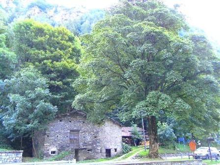 acero di Campodolcino