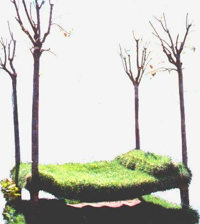 installazione al parterre di Firenze nel 1999 durante la mostra di piante e fiori di primavera