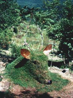 terra di campo, erba, sommaco( per le corna), rame e cartapesta SELVA DI TIRLI, 2001