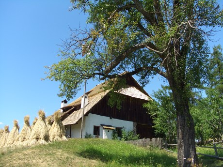 BZ museo apicoltura (5leg)