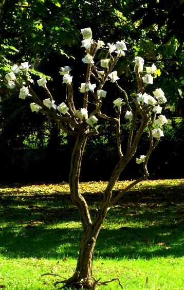 installazione GIOVANE ALBERO DELLA CONOSCENZA, dal 2007 al 2014 nel giardino dell'associazione Pardes di Mirano (VE)